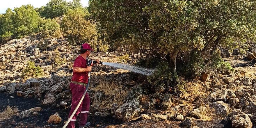 Gaziantep'te örtü yangını