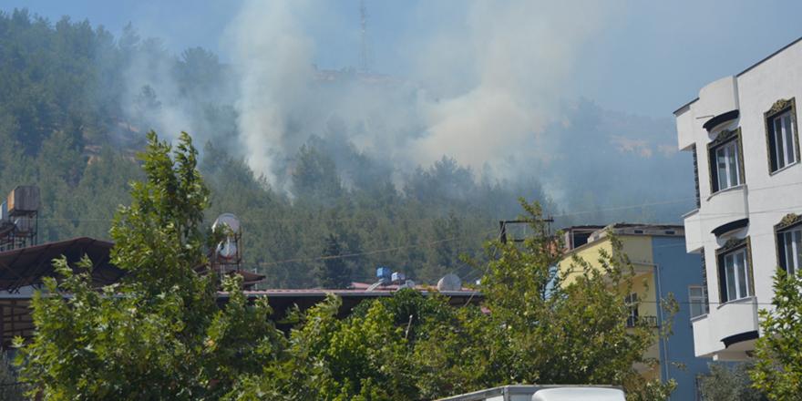 Yine orman yangını