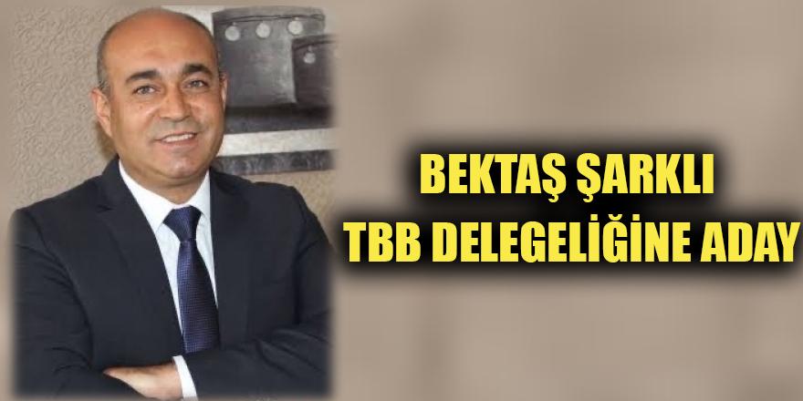 Bektaş Şarklı TBB delegeliğine aday