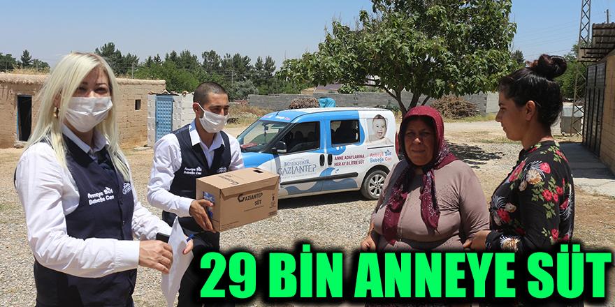 29 Bin Anneye Süt