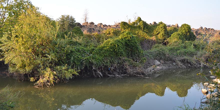 Tilmen Höyük Arkeolojik Parkı'nda sonbahar