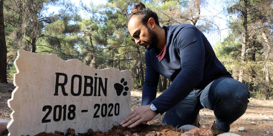 Ölen köpeğini üniversite kampüsüne gömdü