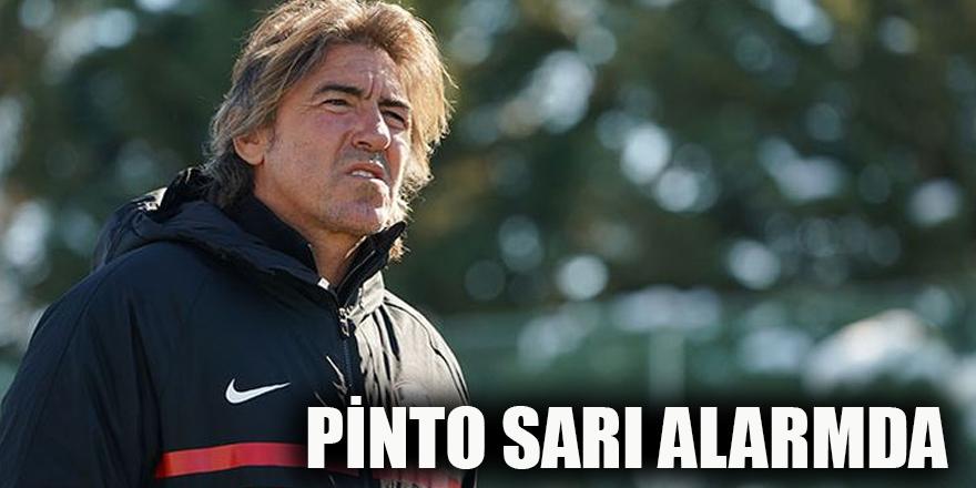 Pinto sarı alarmda