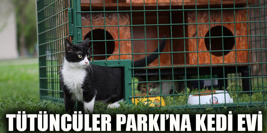 Tütüncüler Parkı'na kedi evi