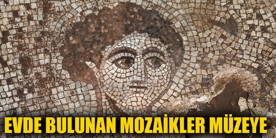 Evde bulunan Mozaikler müzeye