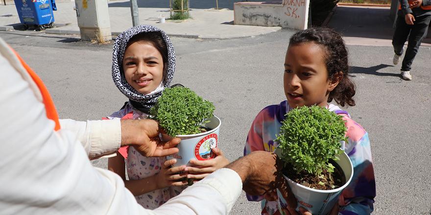 Nizip Belediyesi evlere reyhan dağıttı