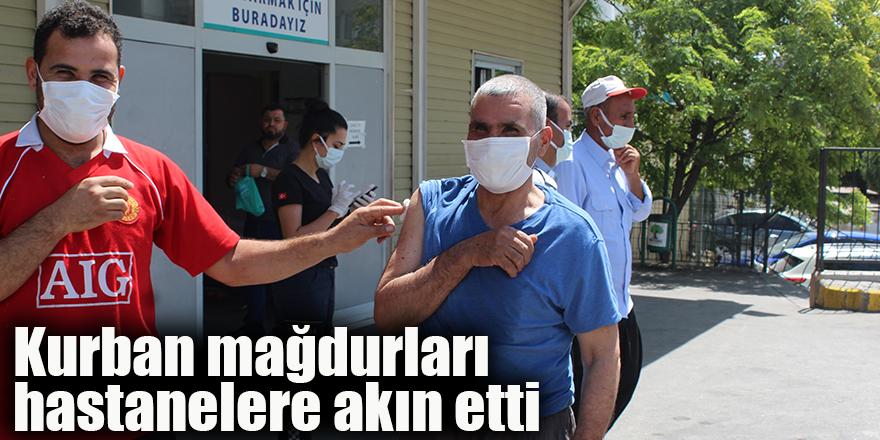 Kurban mağdurları  hastanelere akın etti