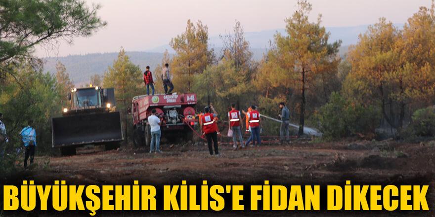 Büyükşehir Kilis'e fidan dikecek