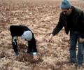 Barak\'ta kuraklık endişesi