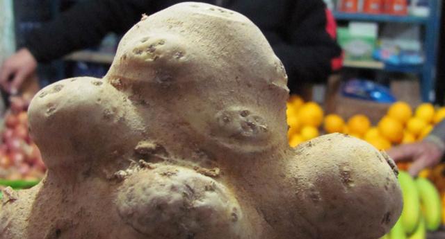 Bu patatesler farklı
