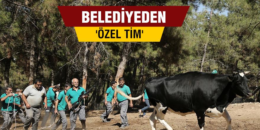 BELEDİYEDEN 'ÖZEL TİM'