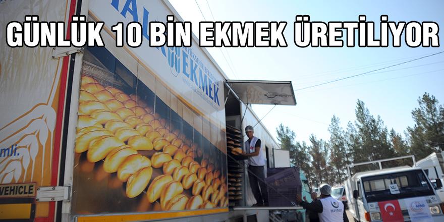 GÜNLÜK 10 BİN EKMEK ÜRETİLİYOR