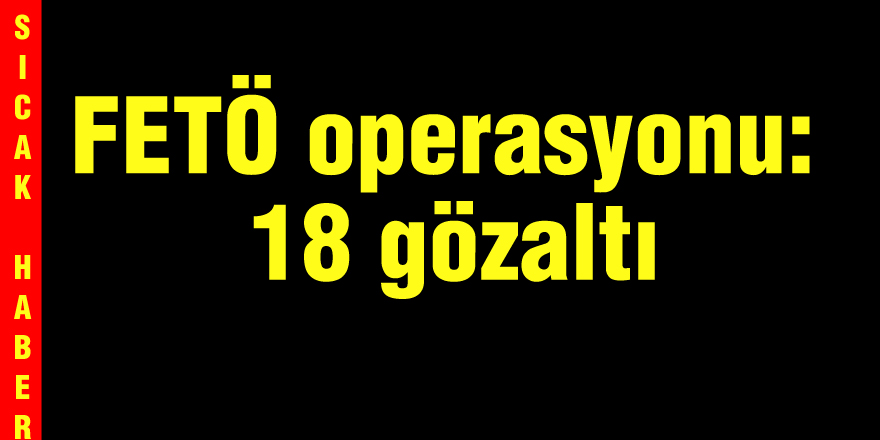 FETÖ operasyonu: 18 gözaltı