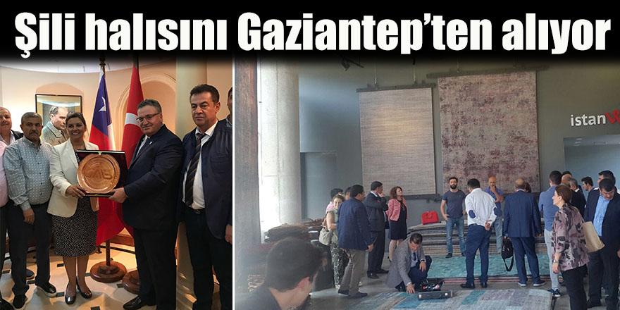 Şili halısını Gaziantep'ten alıyor