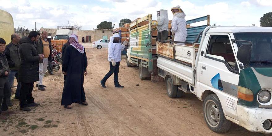 Cerablus ve El-Bab'a tarımsal destek