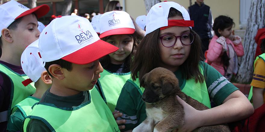 Sokak  Hayvanları Günü kutlandı