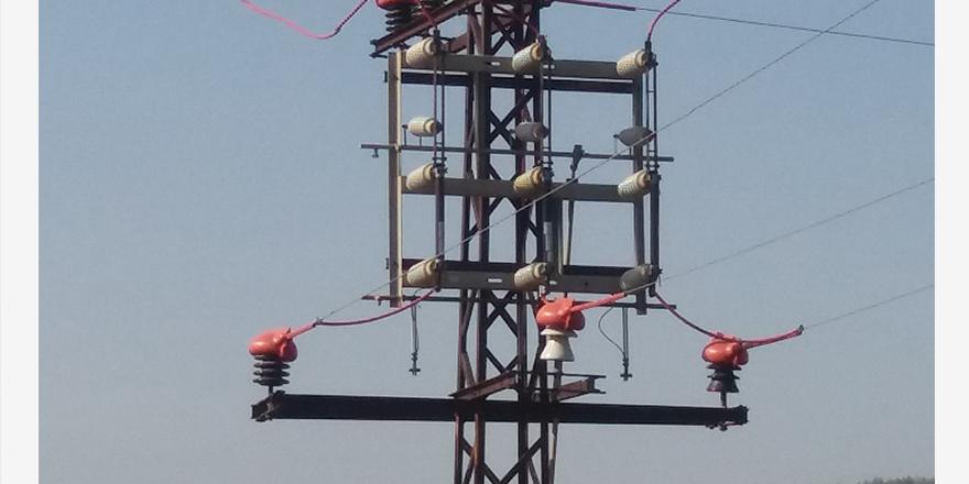 Kuş ölümleri ve enerji kesintileri önlenecek