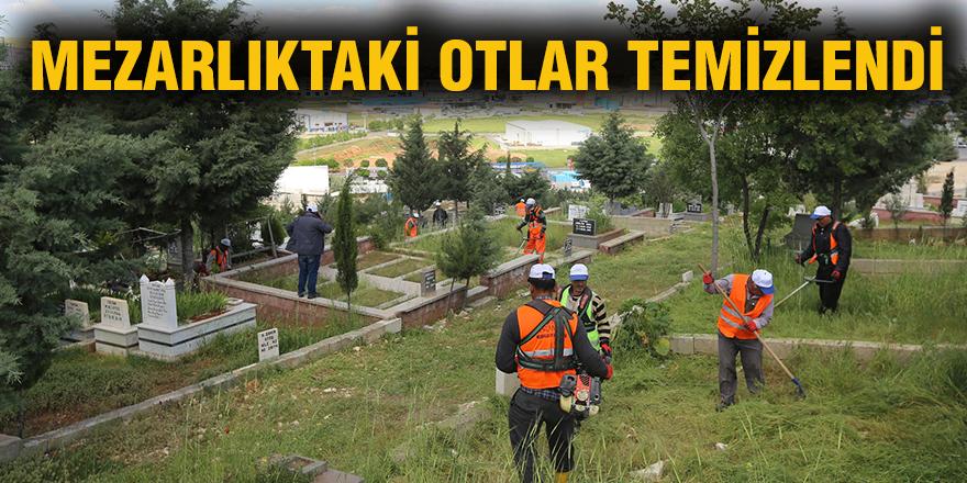 Mezarlıktaki otlar temizlendi