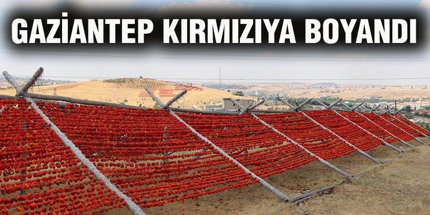Gaziantep kırmızıya boyandı