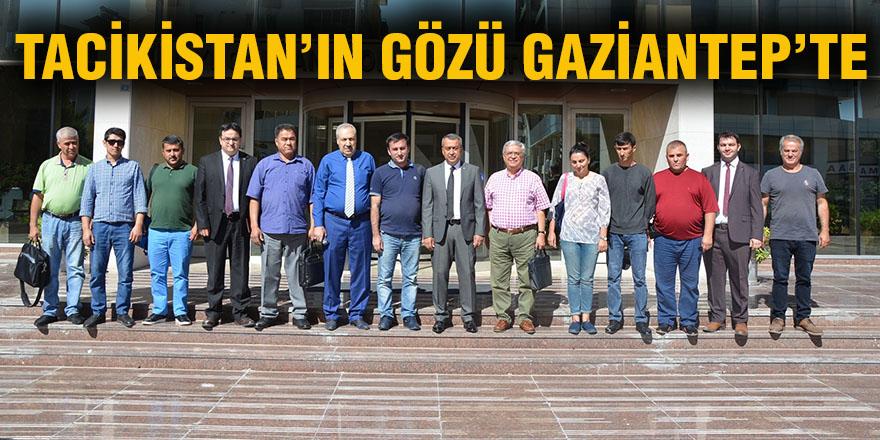 Tacikistan'ın gözü Gaziantep'te