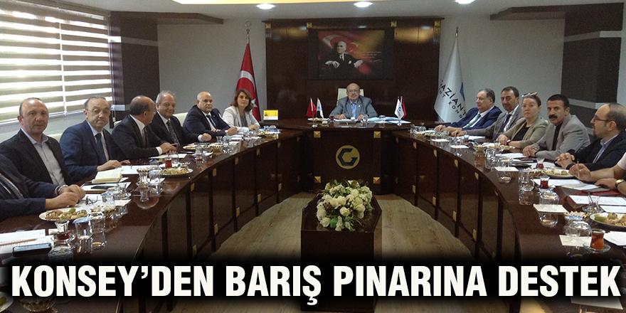 Konsey'den Barış Pınarına destek