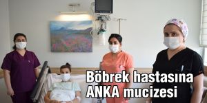 Böbrek hastasına ANKA mucizesi