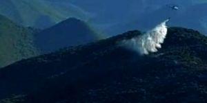 Gaziantep'te meşelik alanda yangın