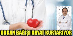 Organ bağışı hayat kurtarıyor