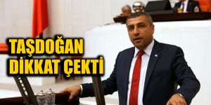 Taşdoğan dikkat çekti