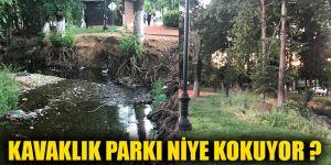 Kavaklık parkı niye kokuyor ?