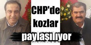 CHP'de kozlar paylaşılıyor