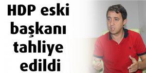 HDP eski başkanı tahliye edildi