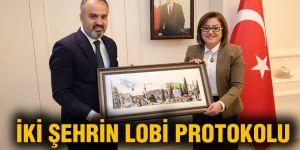 İki şehrin Lobi protokolu