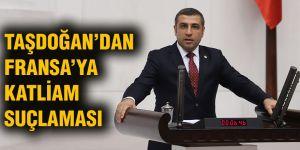 Taşdoğan'dan Fransa'ya katliam suçlaması