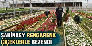 Şahinbey rengarenk çiçeklerle bezendi