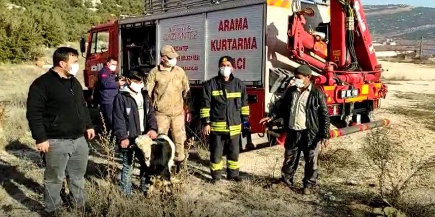 Uçurumda mahsur kalan keçiye kurtarma operasyonu