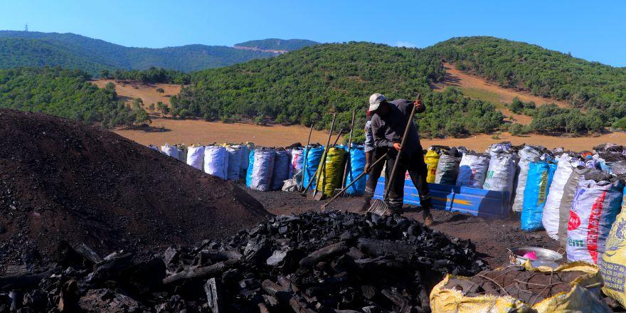 Mangal kömürünün zorlu yolculuğu