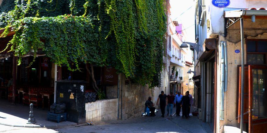 Tarihi kahvehane 25 yıldır sarmaşıkla kaplı