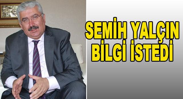 MHP'den Türkmen sorusu