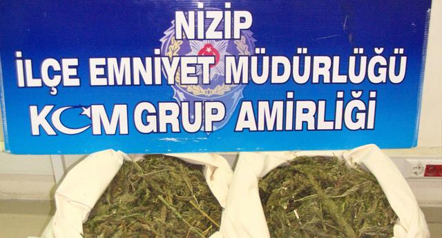 Nizip'te 15 Kilo Esrar Ele Geçirildi